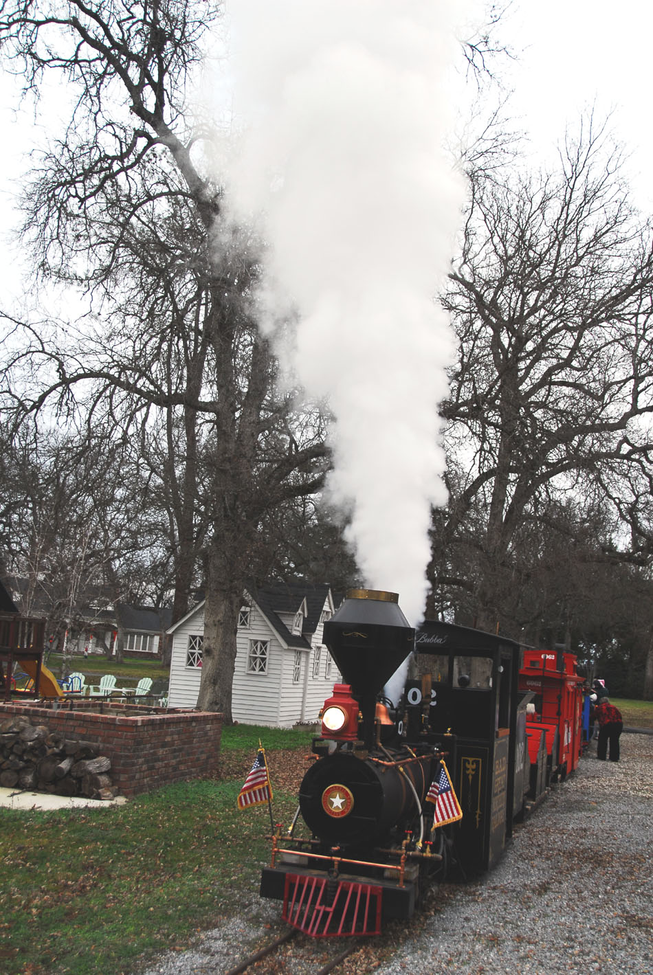 steam trains grand scale railroad 15